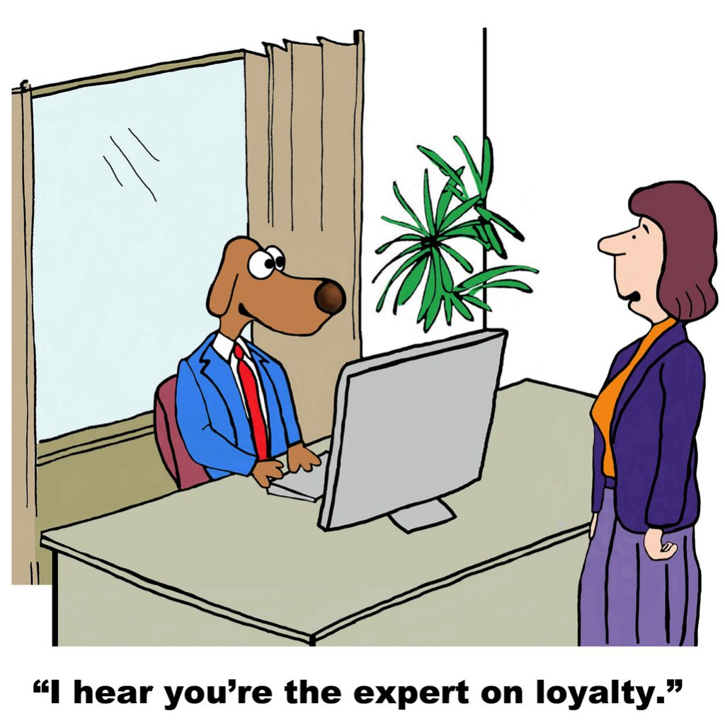 Customer Loyalty Expert